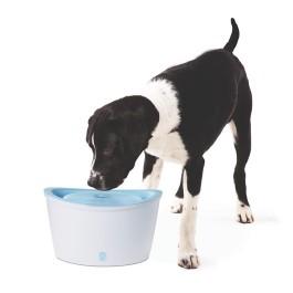 Dogit Design Dog Drinking Fountain - 6 L (200 fl oz) [91400]