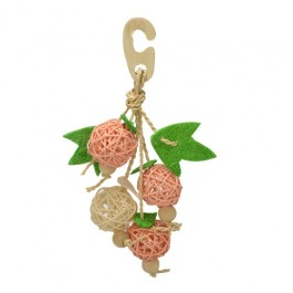 Wild Sanko Natural Hanger Fruit for Birds (A14)