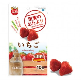 Marukan Freeze Dried Strawberry for Small Animals 10g (ML84)