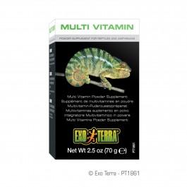 Exo Terra Multi Vitamin Powder Supplement 2.5oz 70g (PT1861)