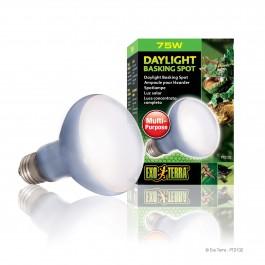 Exo Terra Daylight Basking Spot Lamp R20 75w (PT2132)