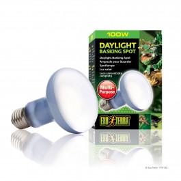 Exo Terra Daylight Basking Spot Lamp R25 100w (PT2133)