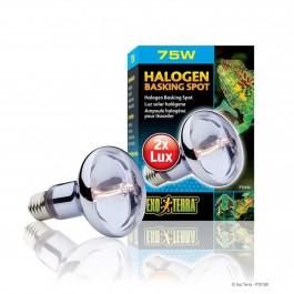 Exo Terra Halogen Basking Spot 75w (PT2182)