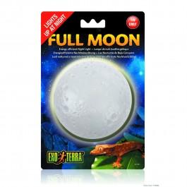 Exo Terra Full Moon (PT2360)