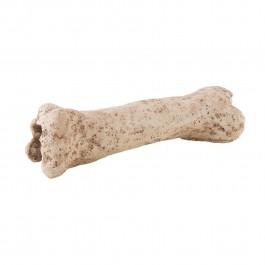Exo Terra Dinosaur Bone (PT2842) NEW