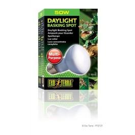 Exo Terra Daylight Basking Spot Lamp R20 / 50w (PT2131)